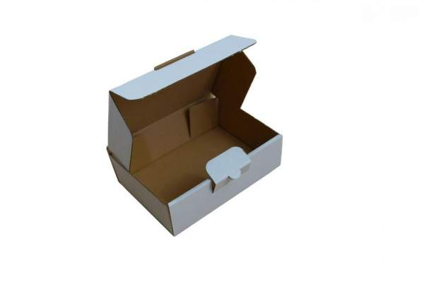 160x110x45mm Maxibriefkarton Weiß